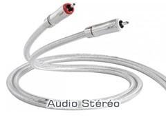 Audio stéréo RCA