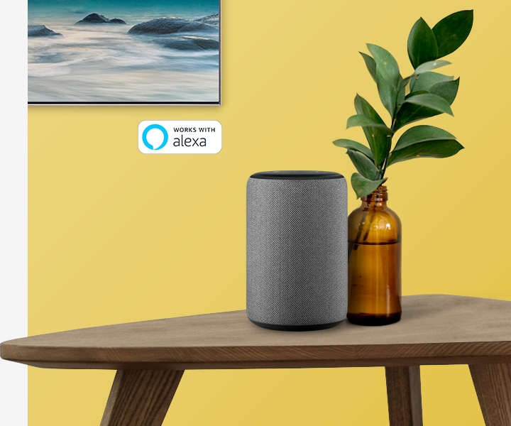 Samsung QE49Q64 R, Amazon Alexa