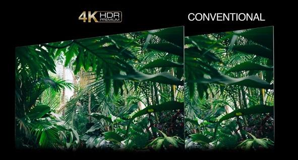 TCL 55C815, téléviseur 4K HDR Premium