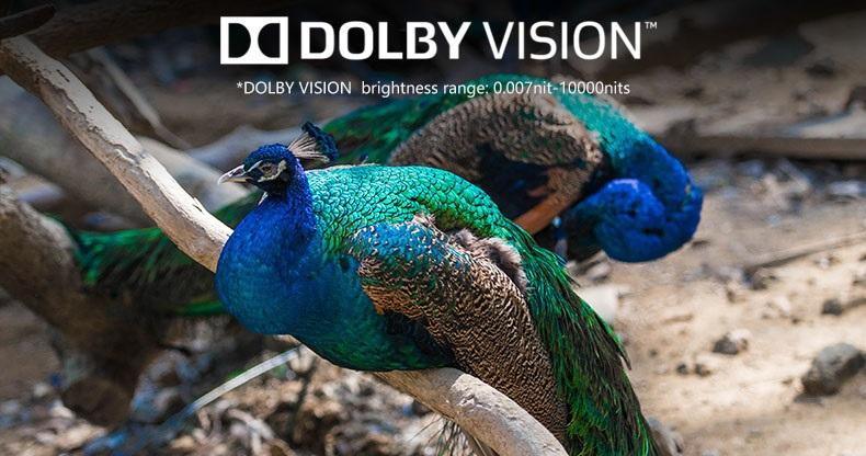 ZIDOO Z10PRO dolby vision