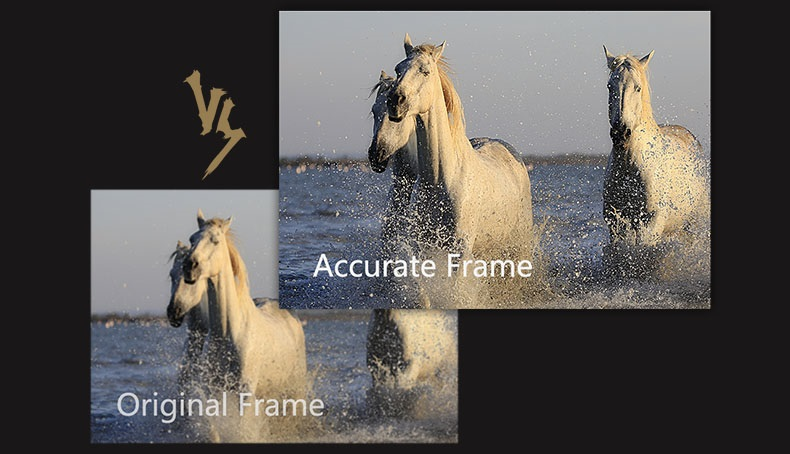 ZIDOO Z9X accurate frame
