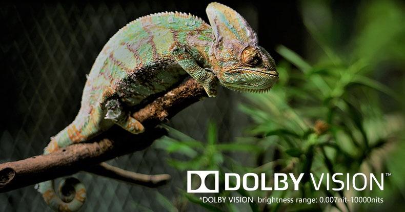 ZIDOO Z9X Dolby Vision
