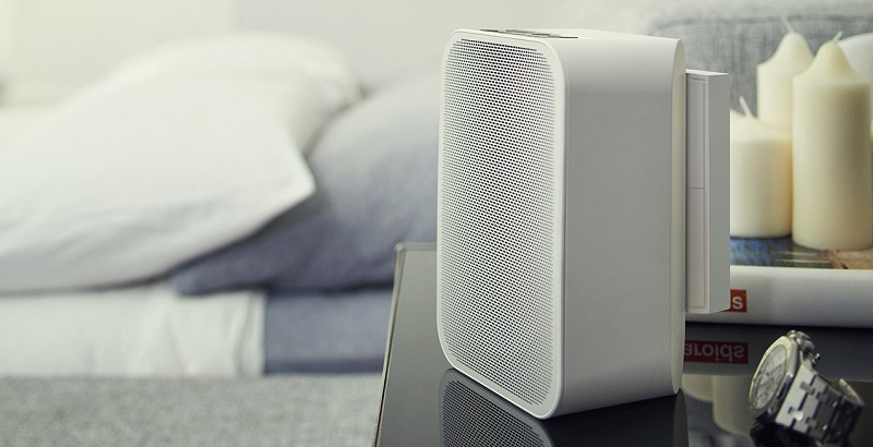 BLUESOUND, batterie pour enceinte Pulse Flex