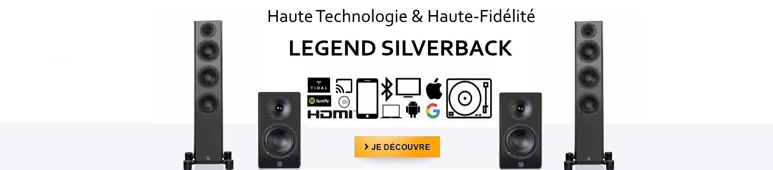 Enceintes Haute fidélité et sans fil System Audio Legend Silverback
